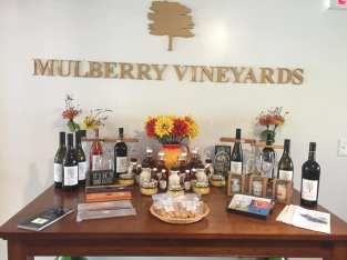 mulberryvineyards04